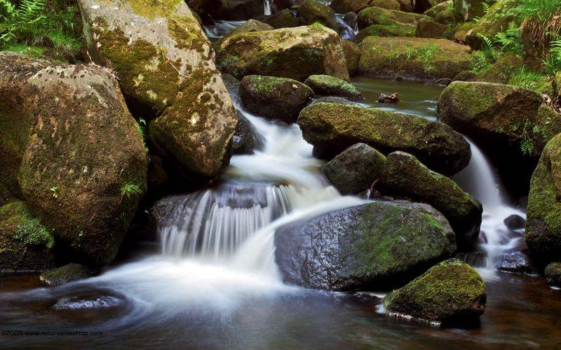 Stream-rocks-longshaw